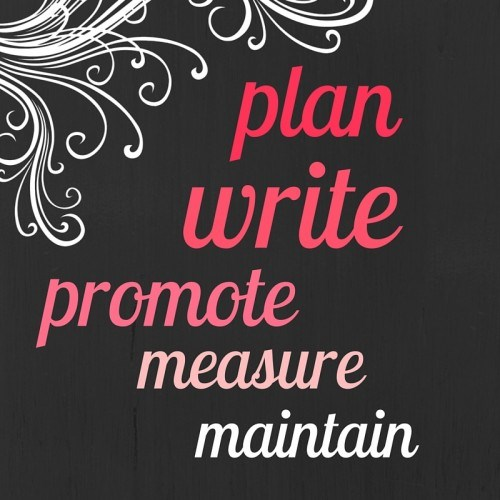 EC Writing Services Plan Write Promote Measure Maintain